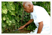 Retirement communities in Coimbatore